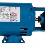 Burks 7CT7M Turbine Pump